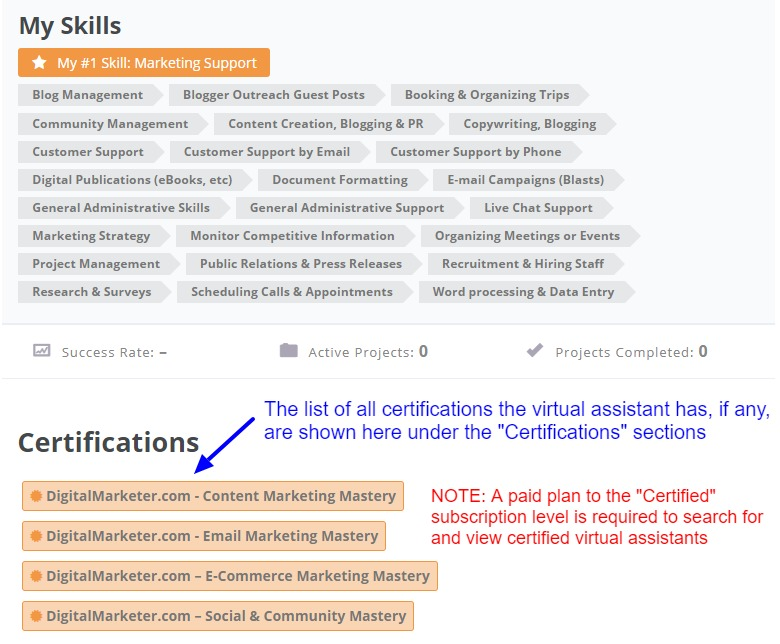 Certifications earned by the Latin Virtual Assistant or virtual marketer